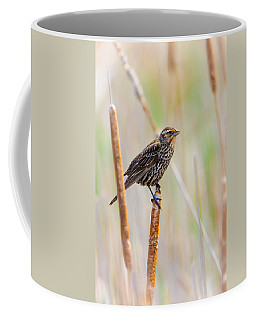 Coffee Mug featuring the photograph Finding Summer by Steven Santamour