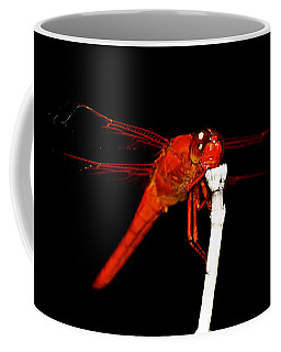 Coffee Mug featuring the photograph Fire Red Dragon by Peggy Franz