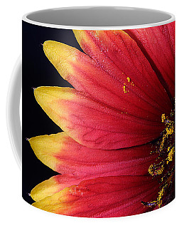 Coffee Mug featuring the photograph Fire Spokes by Paul Rebmann