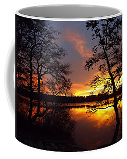 Coffee Mug featuring the photograph Sunrise Fire by Dianne Cowen