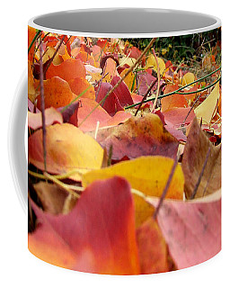 Coffee Mug featuring the photograph First Day Of Fall by Andrea Anderegg