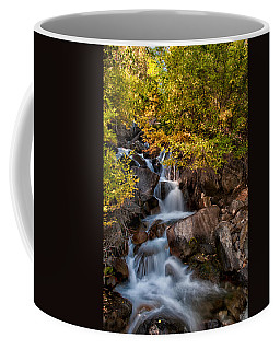 First Falls Coffee Mug