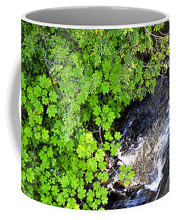 Fish Creek In Summer Coffee Mug by Cathy Mahnke