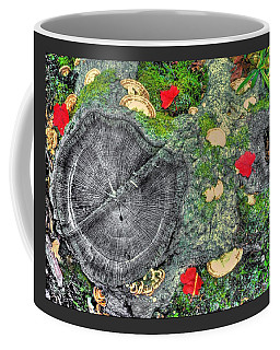 Five Of Ten - Ground Clock - Cunningham Falls State Park Frederick County Maryland - Autumn Coffee Mug