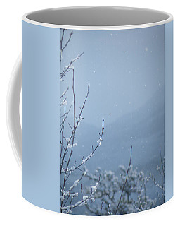 Coffee Mug featuring the photograph Flakes by Brian Boyle