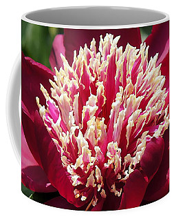 Flaming Peony Coffee Mug by Lilliana Mendez