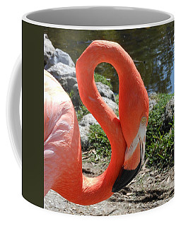 Flamingo By The Pond Coffee Mug by Kay Gilley