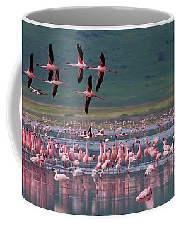 Coffee Mug featuring the photograph Flamingos  #6561 by J L Woody Wooden