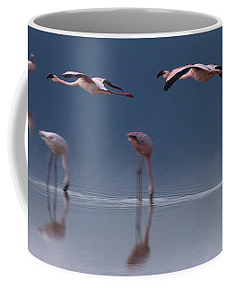 Coffee Mug featuring the photograph Flamingos  #6596 by J L Woody Wooden