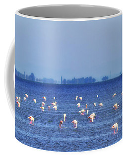 Flamingos In The Pond Coffee Mug