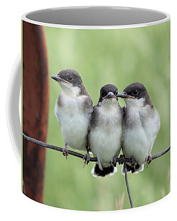 Fledged Siblings Coffee Mug