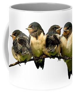 Fledglings Coffee Mug