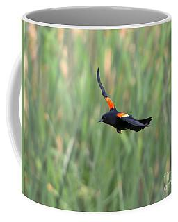 Red Winged Blackbird Coffee Mugs