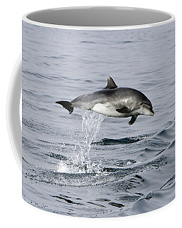 Flight Of The Dolphin Coffee Mug by Shoal Hollingsworth