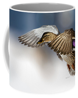 Coffee Mug featuring the photograph Flight Of The Mallard by Bob Orsillo