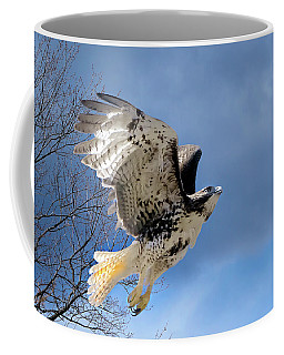 Flight Of The Red Tail Coffee Mug