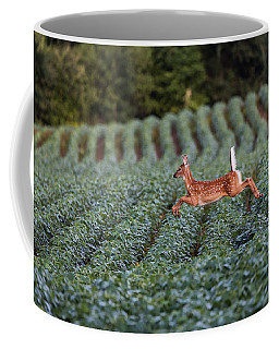 Flight Of The White-tailed Deer Coffee Mug