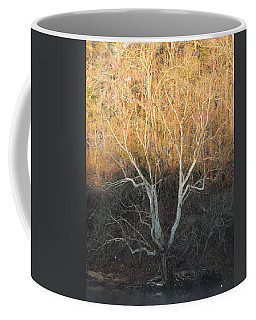 Coffee Mug featuring the photograph Flint River 12 by Kim Pate