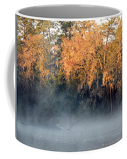 Coffee Mug featuring the photograph Flint River 14 by Kim Pate