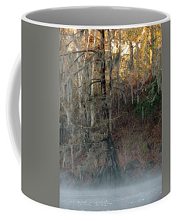 Coffee Mug featuring the photograph Flint River 15 by Kim Pate