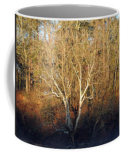 Coffee Mug featuring the photograph Flint River 16 by Kim Pate