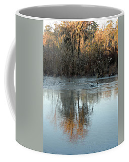 Coffee Mug featuring the photograph Flint River 17 by Kim Pate
