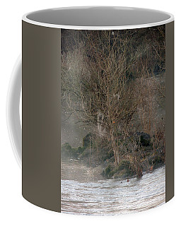 Coffee Mug featuring the photograph Flint River 19 by Kim Pate