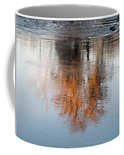 Coffee Mug featuring the photograph Flint River 22 by Kim Pate