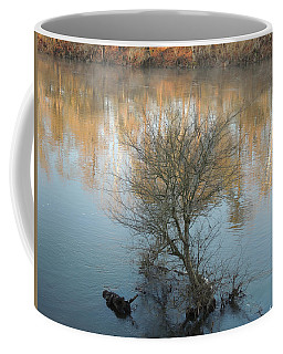 Coffee Mug featuring the photograph Flint River 24 by Kim Pate