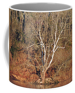 Coffee Mug featuring the photograph Flint River 25 by Kim Pate