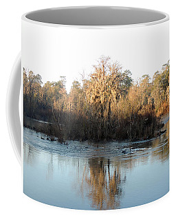 Coffee Mug featuring the photograph Flint River 27 by Kim Pate