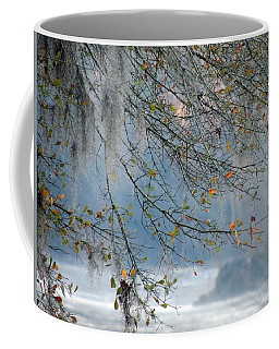 Coffee Mug featuring the photograph Flint River 29 by Kim Pate