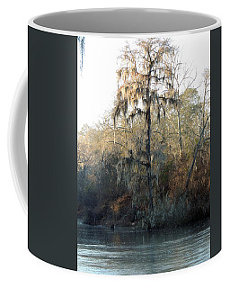 Coffee Mug featuring the photograph Flint River 30 by Kim Pate