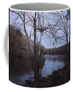 Coffee Mug featuring the photograph Flint River 4 by Kim Pate