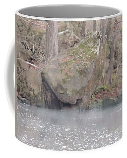 Coffee Mug featuring the photograph Flint River 5 by Kim Pate