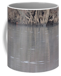 Coffee Mug featuring the photograph Flint River 6 by Kim Pate