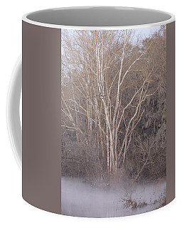 Coffee Mug featuring the photograph Flint River 9 by Kim Pate