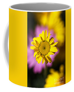 Coffee Mug featuring the photograph Floating Daisy by Joy Watson