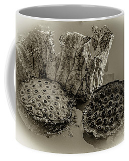 Floating Lotus Seed Pods 2 Coffee Mug