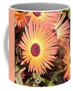 Coffee Mug featuring the photograph Floral by Cathy Mahnke