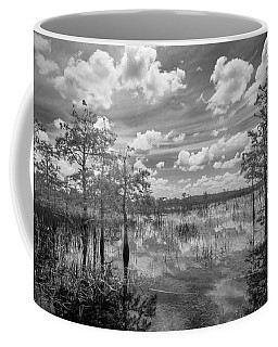 Florida Everglades 5210bw Coffee Mug