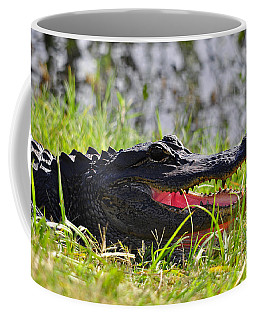 Gator Grin Coffee Mug by Al Powell Photography USA