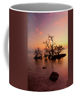 Florida Keys Sunset Coffee Mug