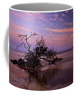 Florida Mangrove Sunset Coffee Mug
