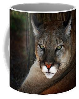 Florida Panther Coffee Mug
