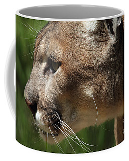 Coffee Mug featuring the photograph Florida Panther Profile by Meg Rousher