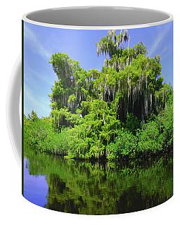 Florida Swamps Coffee Mug