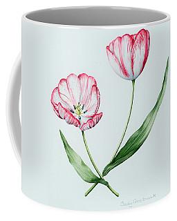 Florists Tulip Mabel Coffee Mug