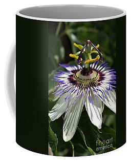 flower-Passionfruit Coffee Mug
