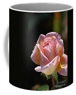Flower-pink And Yellow Rose-bud Coffee Mug
